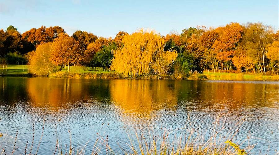 Le Domaine d'aghan - automne
